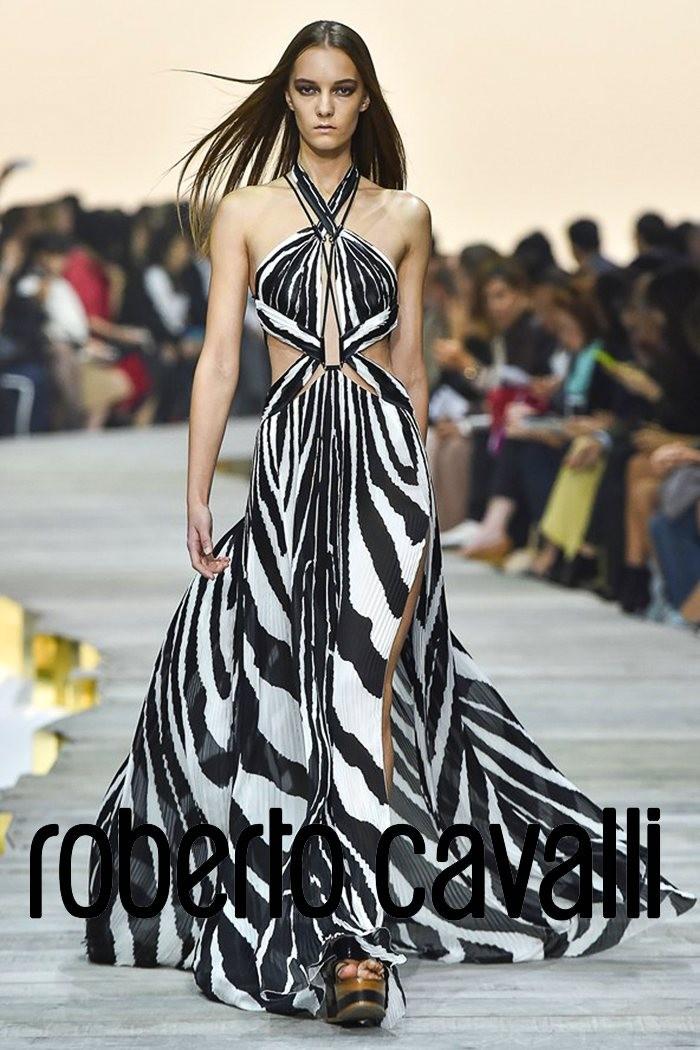 Fashion Show  Butterflies
